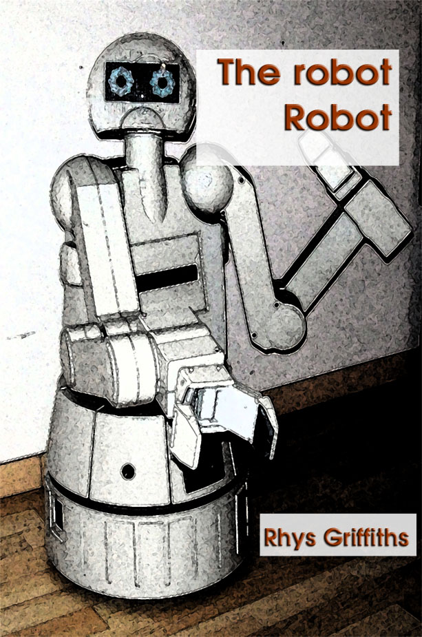 The robot Robot by Rhys Griffiths
